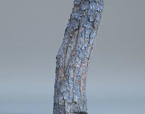 Tree log 01 3D