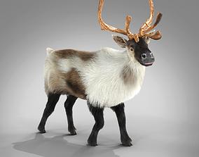 Fur Reindeer Rigged Blender 3D model