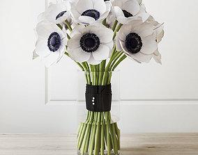3D White anemone
