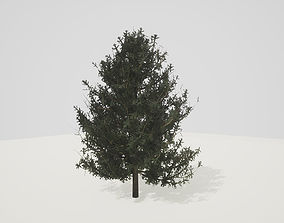 3D model Tree Pine