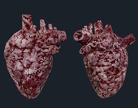 3D model Heart Human Organ Game Ready 06