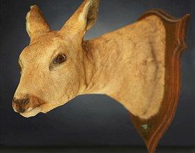 3D asset game-ready Deer head Photorealistic