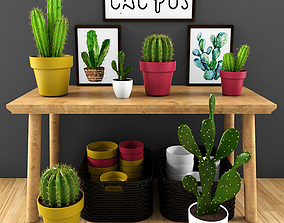 forestry cactus set 3D model