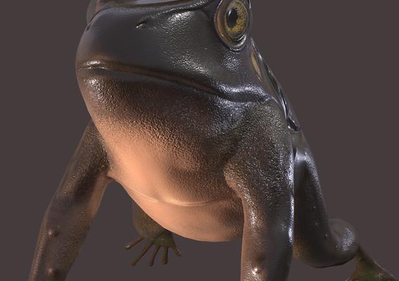 Frog Brown