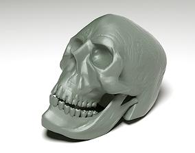 3D printable model head skeleton for print
