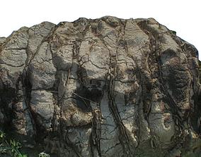 Ground Palm Tree 3D asset