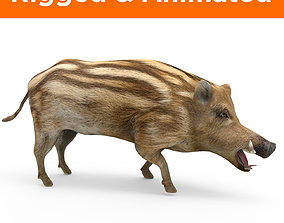 animated 3d Boar Rigged and Animated model