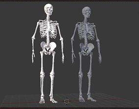 Realistic Human Skeleton models VR / AR ready