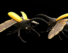 3D model low-poly Hercules Beetle