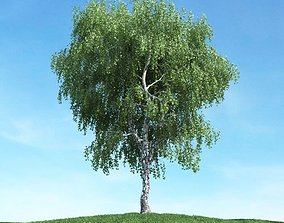Green Weeping Leafy Tree 3D
