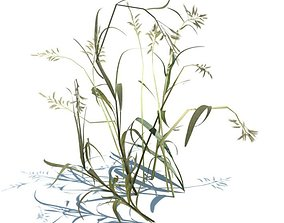 Bending Grass Seeds 3D model