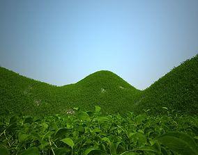 Grass Decoration 3D asset
