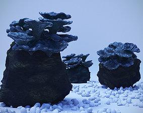 3D model Coral polyp