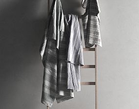 3D Ladder with Towels 2