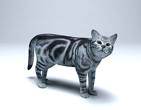 animated Cat for 3ds Max