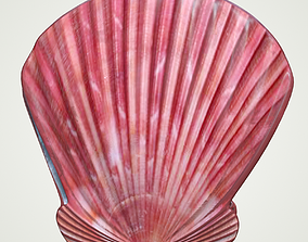 Sea Shell Scallop Pecten shell 4K 3D