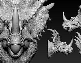 Triceratops Head head 3D print model
