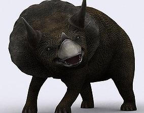 animated 3DRT - Dinosaurs - Triceratops