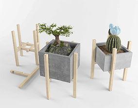 Flower set 3 3D