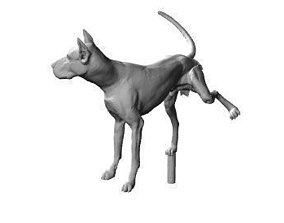 3D printable model Dog leg lifting
