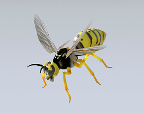 3D model Wasp high poly honey