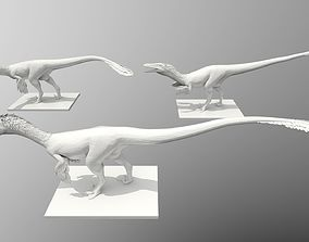 3D printable model Raptor Three Poses
