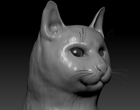 Cat head 3D model animals