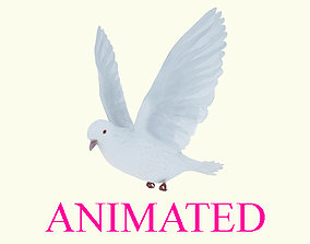 Animated flying realistic white dove bird- loop 3D model 1