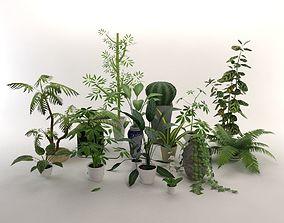 15 Office Plants Low Poly 3D asset