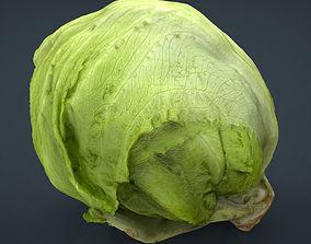 3D model Iceberg Lettuce