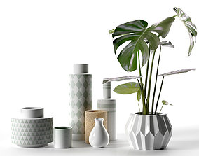 Vase Set with Monstera Plant 3D