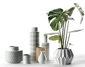 3D Vase Set with Monstera Plant