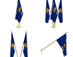 Wisconsin Flag Pack 3D