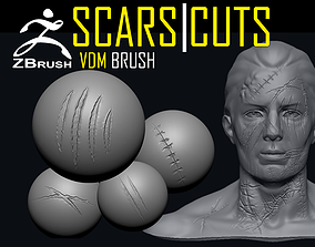 3D model Scars and Cuts VDM ZBrush