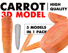 3D Carrot with all slices pack