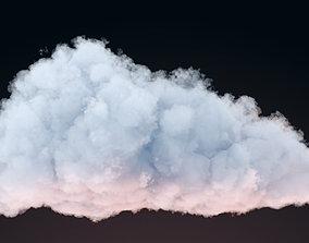 VDB Cloud 01 3D model
