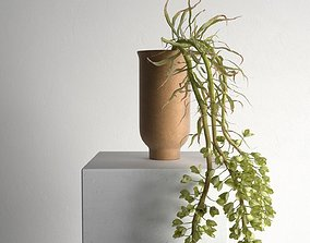 Cyclades Vase with Plants 3D