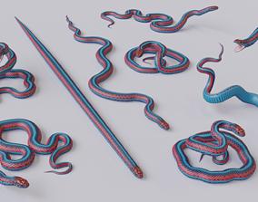 realtime San Francisco Garter Snake - 3D Mesh