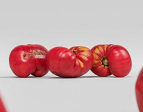 Tomato 007 3D model
