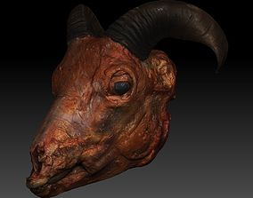 Skinned Sheeps Head High Detail Scan With Texture 3D model