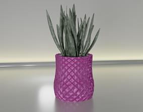 succulent plant pot 23 3D print model