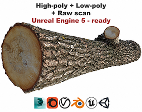 3D model Log scan low-poly high-poly