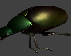 3D model animated Gold Beetle