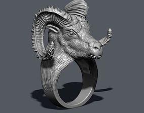 3D print model aries ring
