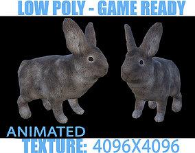 Rabbit Animated 3D model