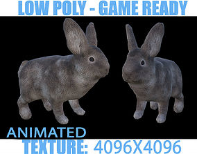 Rabbit Animated 3D model