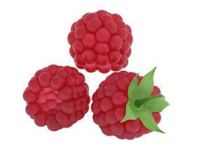 fresh Raspberry 3D
