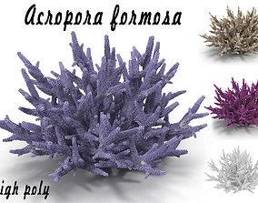 3D model Acropora formosa