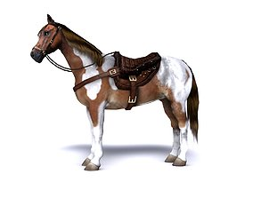 Pinto Horse with saddle and bags 3D model