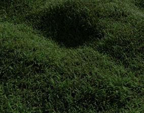 3D FOREST MOSS